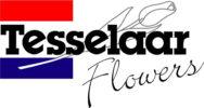 tesselaar-flowers-logo